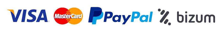 visa-paypal-mastercard-bizum